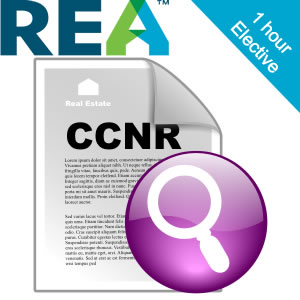 REA CPD - Pre-Listing: Supplementary reports and documentation