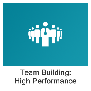 Team Building: Developing High Performance Teams